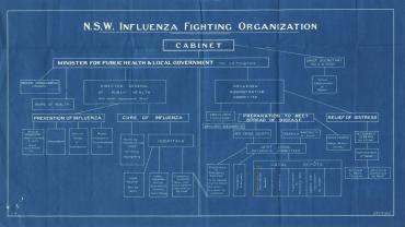 Organisational chart of NSW Influenza Fighting Organization, 1919. From: NRS 905, [5/8098], 19/58062.