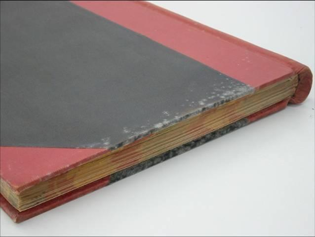 White, fluffy mould like this is common on book volumes and records