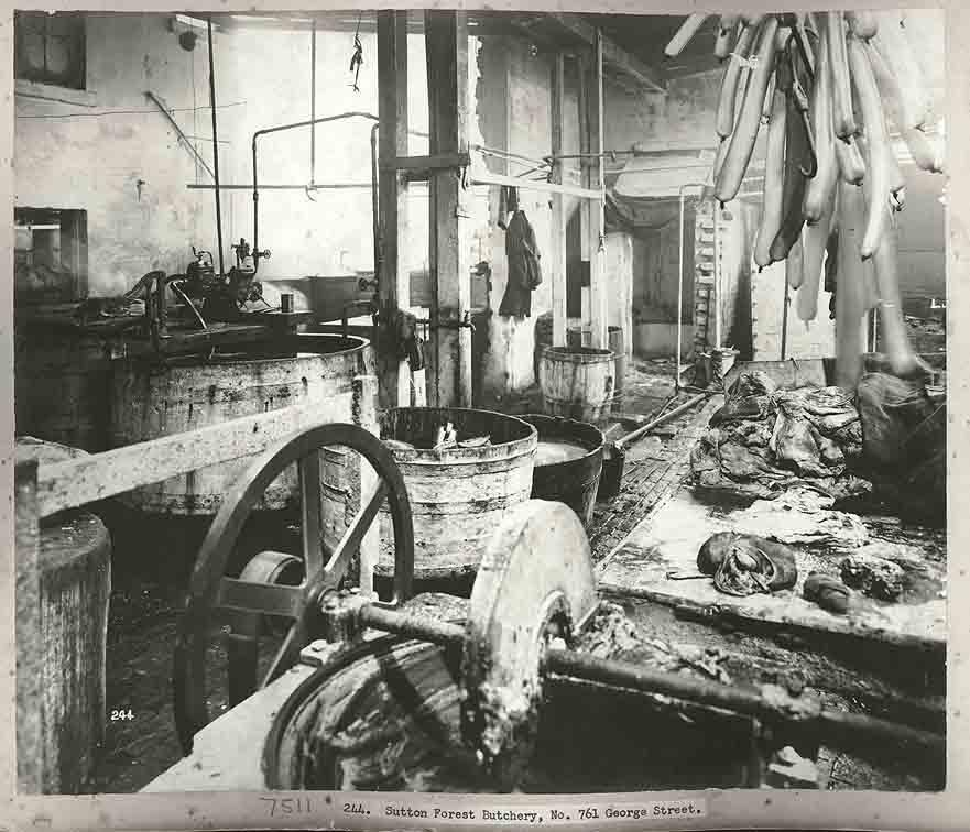 What would you like to purchase from this butcher? Sutton Forest Butchery 761 George Street Sydney, 1900. Digital ID 12487_a021_a021000007